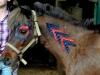 mickey déguisé pour la fête du cheval